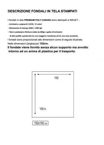 D'APONTE FONDALE IN TELA STAMPATO PFS 12-007