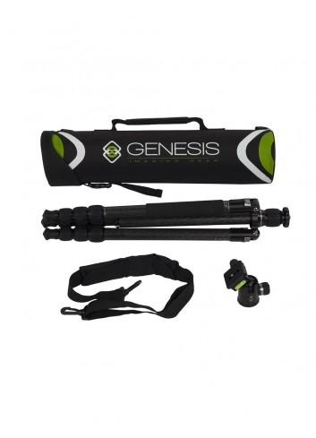 GENESIS Base C3 + BH-34 Kit Grey